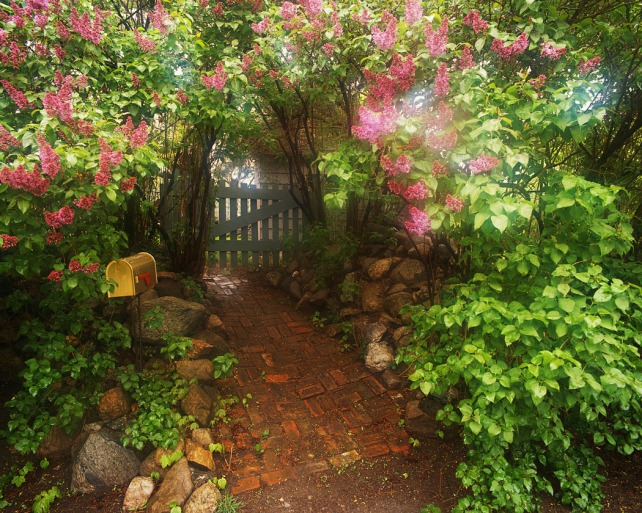 Garden Path and Gate